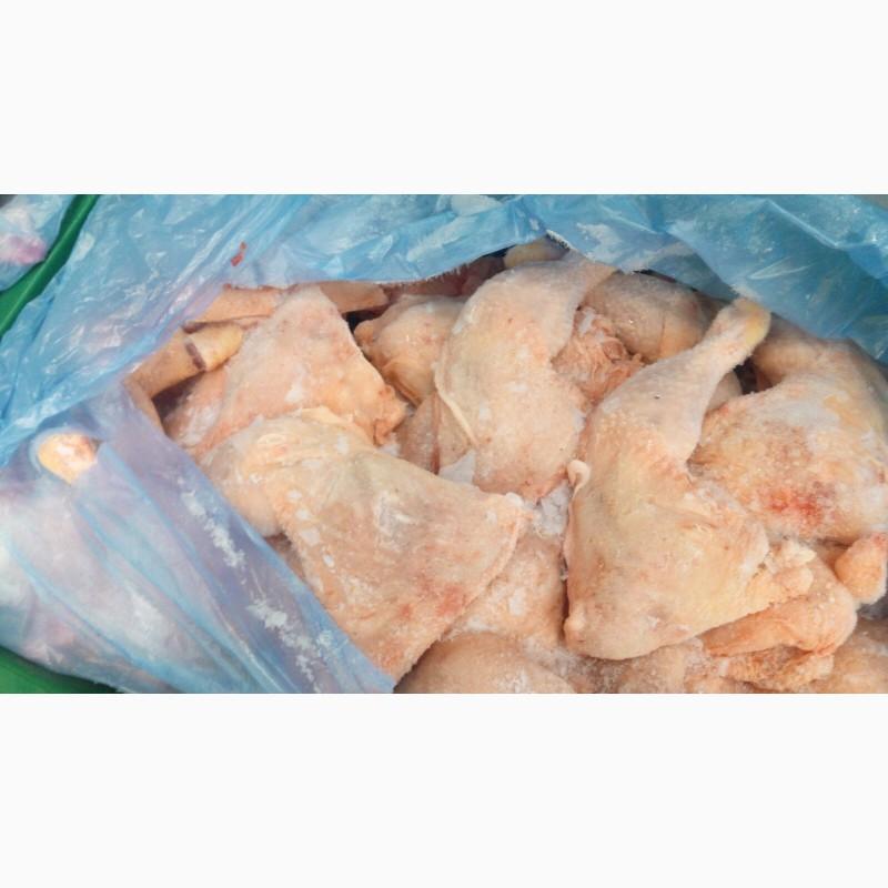 Фото 15. Продам замороженные и охлажденные части курицы. От производителя с Венгрии