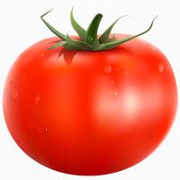 Агроном тепличного хозяйства