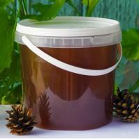 Продается 100% Натуральный Лесной мёд из России
