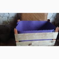 Производим всякие деревянные ящики